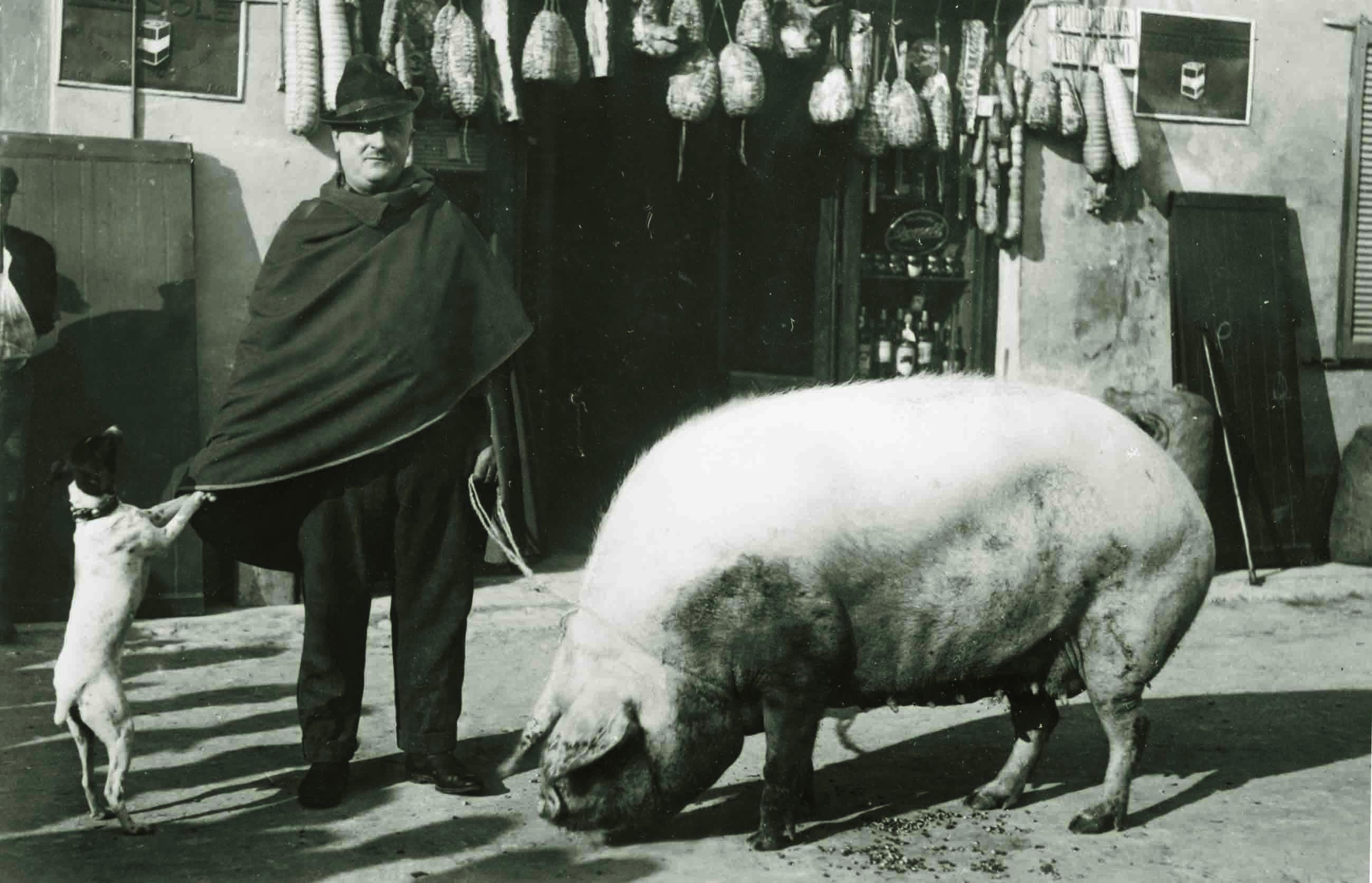 Il salumiere Guerino Buffetti davanti alla sua bottega, Busseto (PR), 1925 ca.