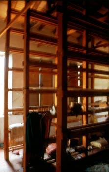 Una scalera all'interno di un salumificio dismesso. Possiamo notare come vi sia un forzato adattamento alle caratteristiche di un edificio con una funzione originaria diversa dal salumificio