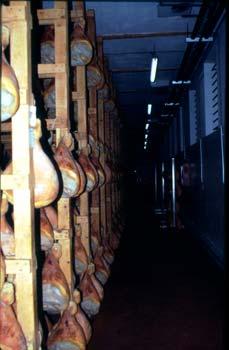 Una scalera all'interno di un salumificio in attività. Lo spazio diventa organizzato in funzione della produzione
