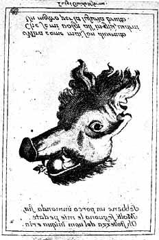 [Foto5b] L'uomo porco: Incisione su rame, XVIII secolo. Bologna, Collezione privata. I vizi dell'uomo divengono metafora del maiale in questo arcimboldesco gioco grafico del Settecento italiano