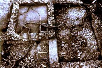 Particolare degli stalletti dalla porcilaia della villa di Settefinestre: metà del II sec. d. C.